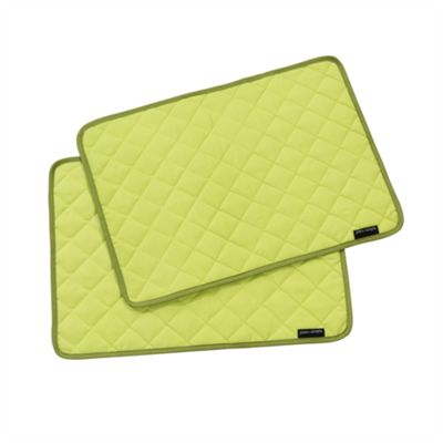 Hamilton Mcbride Plain & Simple Pack of 2 Placemats - Lime Punch