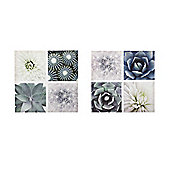 Parlane Large Floral Succulents Wall Art Canvas - Set Of Two