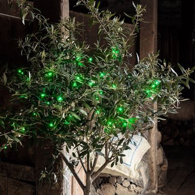 50 Green LED Outdoor Battery Fairy Lights