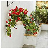 Artificial Red Geranium Hanging Basket