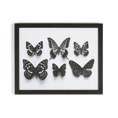 Art for Home Botanical Butterflies Framed Print