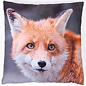 Photographic Fox Square Cushion