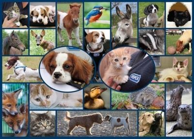 RSPCA - All Creatures Great and Small - 1000pc Puzzle