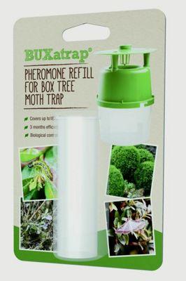 Bayer BUXatrap Box Tree Moth Trap Pheromone Natural - Refill for Unit