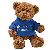 Gund 29cm I Am The Big Brother Plush Teddy Bear
