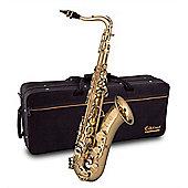 Elkhart 100 Series Tenor Sax