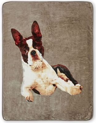 Catherine Lansfield French Bulldog Panel Print Raschel Throw - 150 x 200 cm