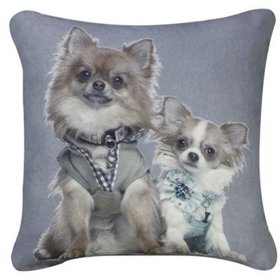 Pomeranian Dogs Portrait Cushion - Blue & Grey