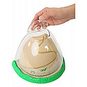Live Ant Hill with Escape Proof Lid