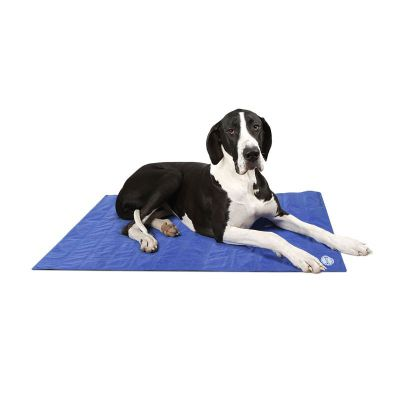 Scruffs Self-Cooling Mat - X-Large 120cm x 75cm