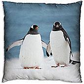 Photographic Penguin Square Cushion