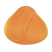 La Riche Apricot Hair Colour