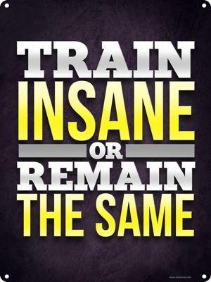 Train Insane Or Remain The Same Tin Sign