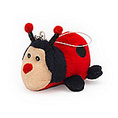 Intelex Dusty Pup Screen cleaners small Ladybird