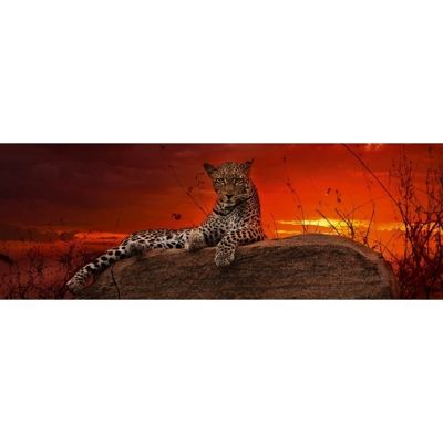 Red Dawn - 2000pc Panoramic Puzzle