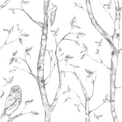 Woods Grey Wallpaper