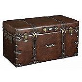 Faux - Leather Look Medium Storage Trunk / Case - Brown