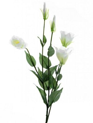Artificial - Lisianthus Spray - Ivory