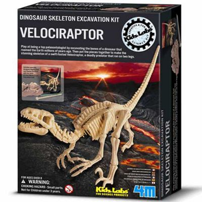Great Gizmos Dinosaur Skeleton Excavation Kit Velociraptor