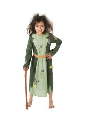 Roald Dahl The Twits Mrs Twit Fancy Dress Costume Green 3-4 years