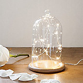 Regular Glass Bell Jar with 20 Warm White Micro LED Fairy Lights
