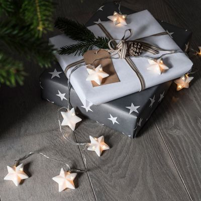 10 Ceramic Star Battery LED Fairy Lights