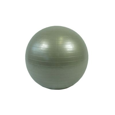 Bodymax Anti Burst Gym Ball - 55cm (Silver)