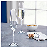 Fox & Ivy Crystal Glass Pack of 4 Champagne Flutes