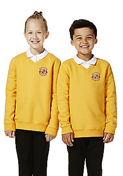 Unisex Embroidered V-Neck School Sweatshirt with As New Technology - Gold