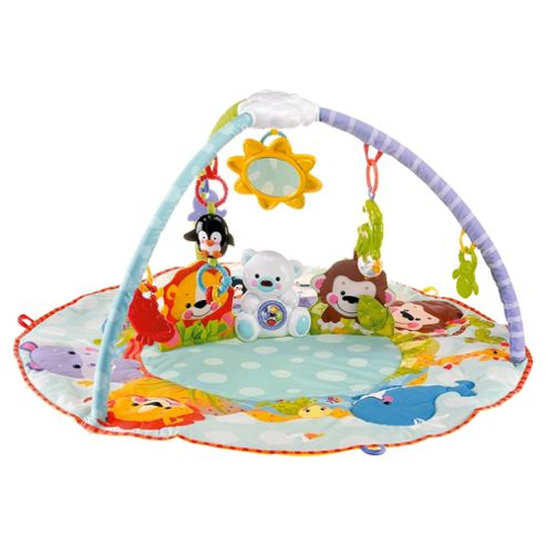 Fisher-Price Precious Planet All Around Musical Baby Activity Play Gym