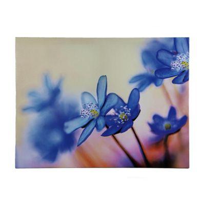 Blue Hydrangeas Canvas 60x80cm