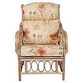Desser Morley Armchair & Monet Cushion