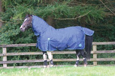 Masta Zing Lightweight Fixed Neck Horse Turnout Dark Navy 6ft