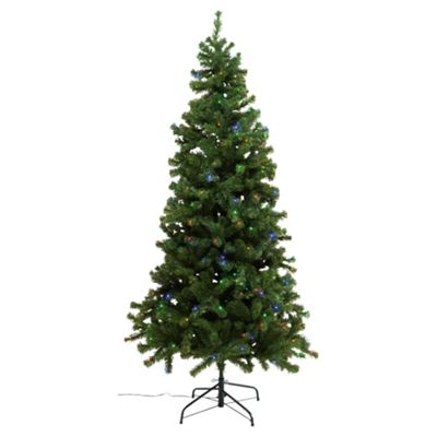 Festive Noble Pre-Lit Christmass Tree With Multi-Coloured LED Lights, 7ft
