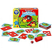 Orchard Toys The Game Of Ladybirds Educational Game