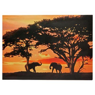 Sunset Elephants