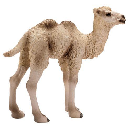 Schleich Camel Foal
