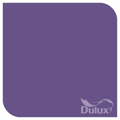 Dulux Feature Wall Matt Emulsion Paint, Purple Pout, 1.25L