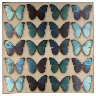 Teal Butterflies Printed Canvas 57cm x 57cm