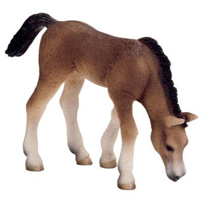 Schleich Arabian Foal, Grazing