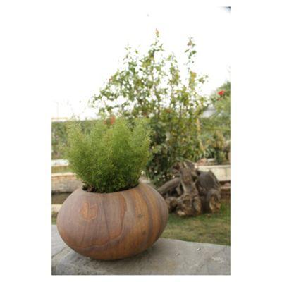 Apus Rainbow Stone Planter 40cm