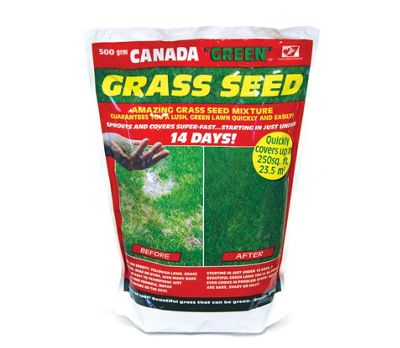 500g Canada Green Grass Seed