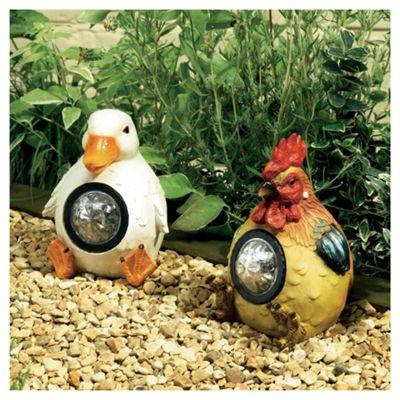 Farmyard Animal Spotlights Hen & Duck