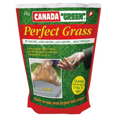 Canada Green Perfect Grass