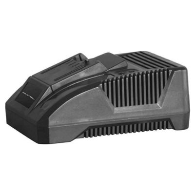 Pure 18V 1 Hour battery charger