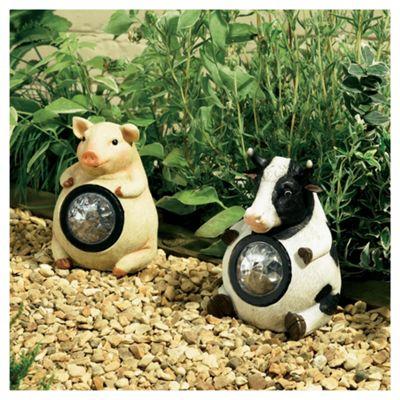 Farmyard Animal Spotlights Pig & Cow