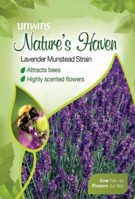 Natures Haven Lavender Munstead Strain