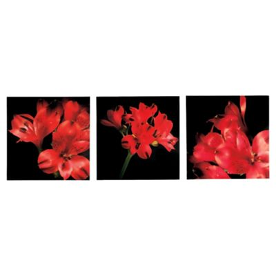 Red Flower Triptych