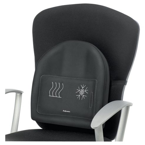 DS Fellowes Heat & Soothe Back Support