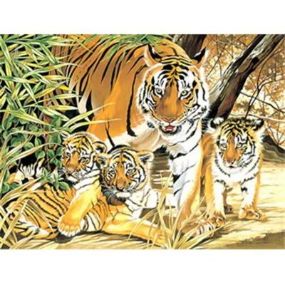 Senior PBN - Tiger & Cubs